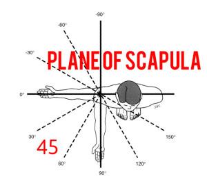 Scapular Plane